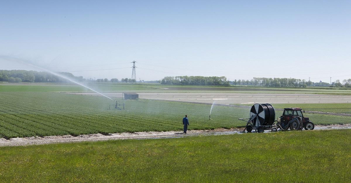 Noord-Holland verbiedt glyfosaat